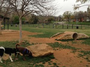 Euless Pes Sitting and Dog Walking