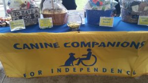 pets businesses table with donations