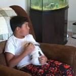 pet sitting a bunny