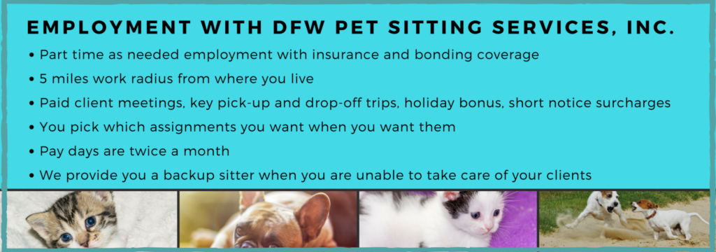 pet sitting and dog walking jobs in dallas