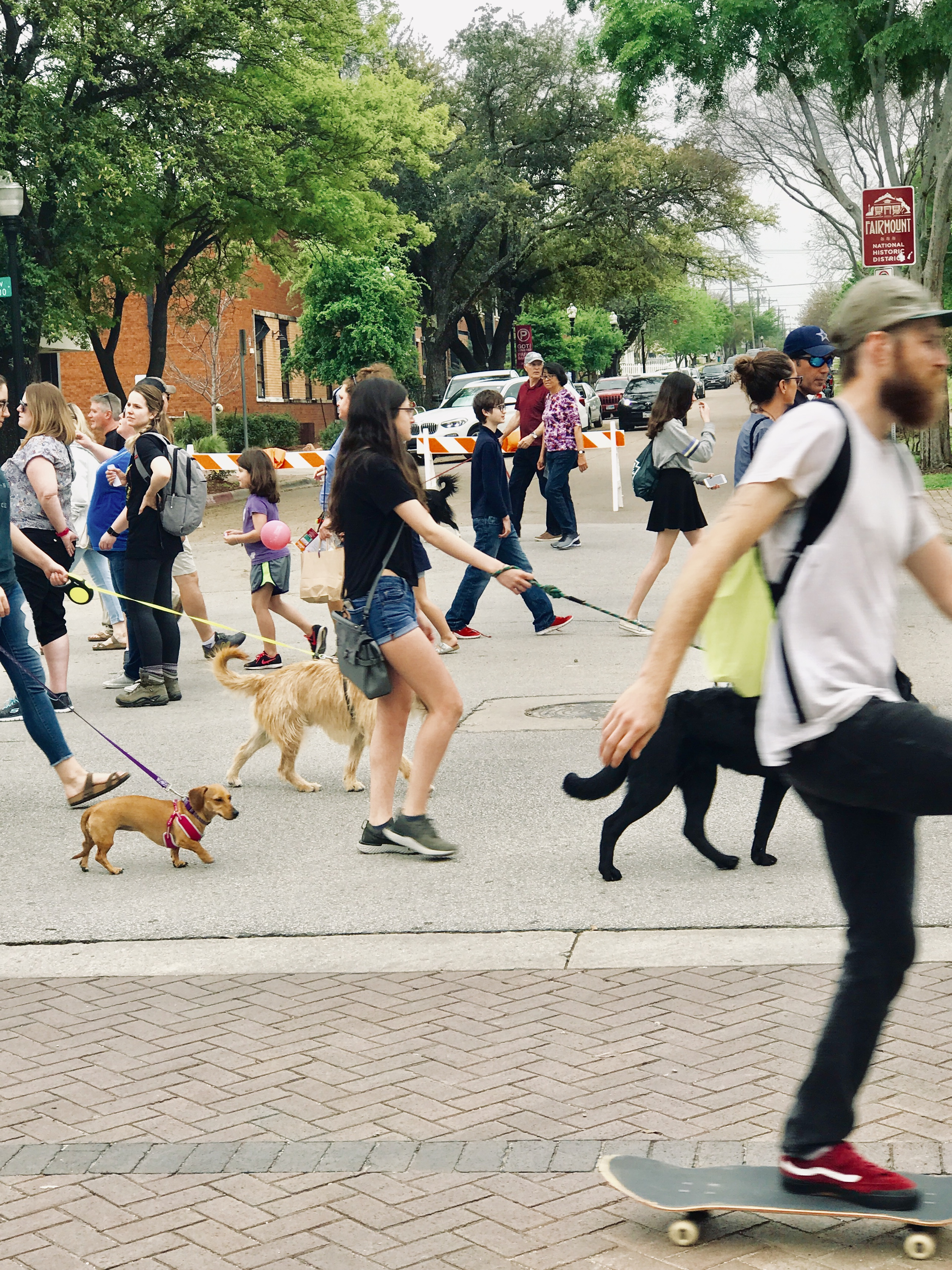 Open Streets for Dog Walkers in Fort Worth